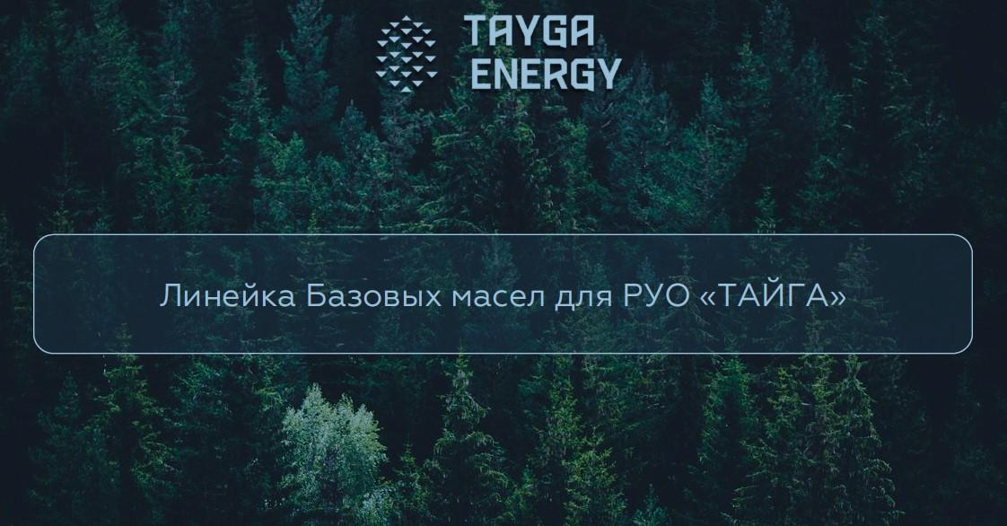 «Тайга Энерджи» выступила с докладом на  конференции «Нефтегазсервис-2019».